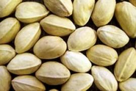 Closed shell pistachio
